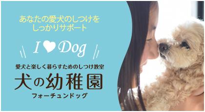 あなたの愛犬のしつけをしっかりサポート 愛犬と楽しく暮らすためのしつけ教室 犬の幼稚園 フォーチュンドッグ